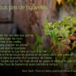 Poèmes en photos